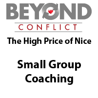 High Price of Nice - Small Group Coaching